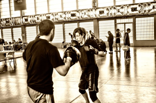 Boxe Anglaise Patte d'Ours