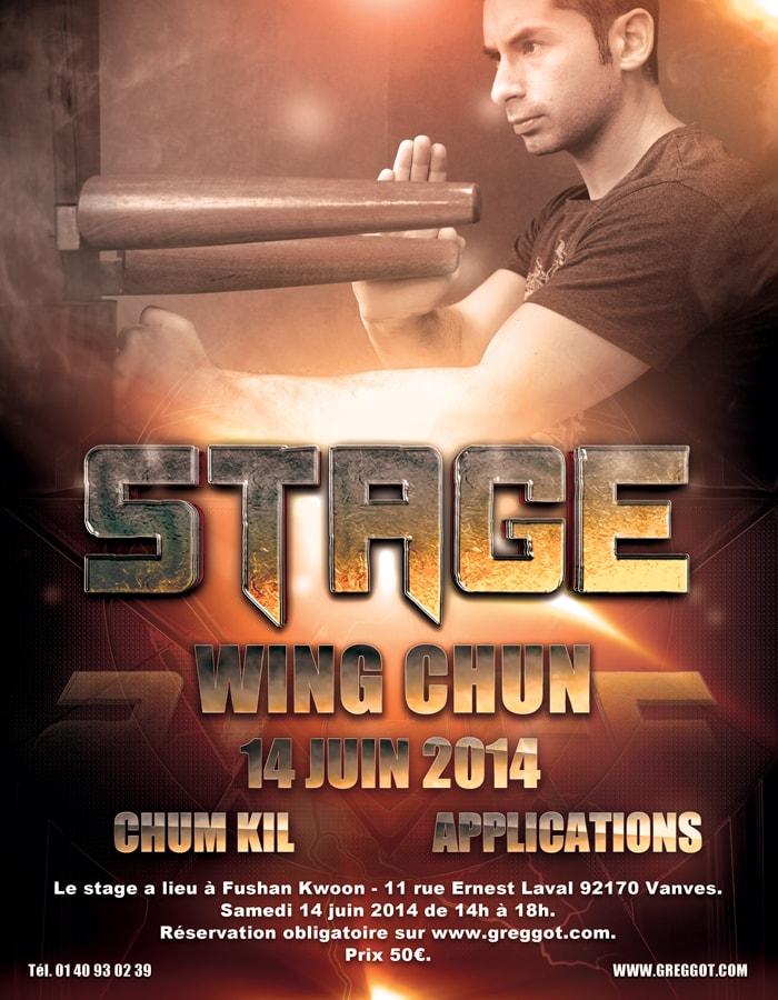 Stage de Wing Chun 14 juin 2014