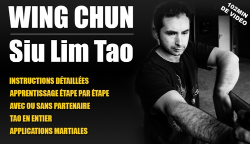 Apprendre-Wing-Chun-Siu-Lim-Tao