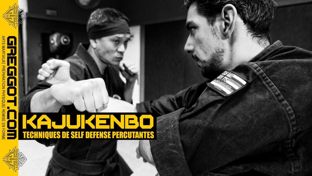 kajukenbo un art martial percutant pour la self defense. Black Bedroom Furniture Sets. Home Design Ideas
