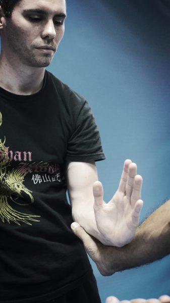 Wing-Chun-Automatisation