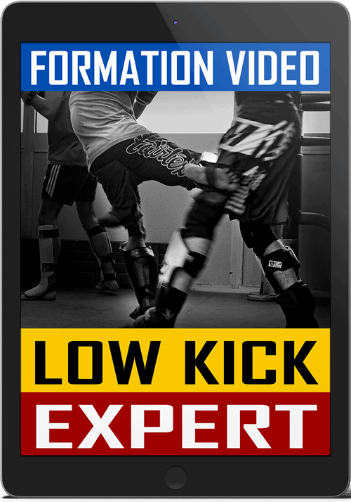 Cover-Low-Kick-Expert-Tablet-V2-500px