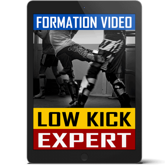 Cover-Low-Kick-Expert-Tablet-V2
