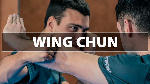 Stage de Wing Chun 17 Mars 2019